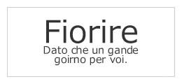 Fiorire(レディス)